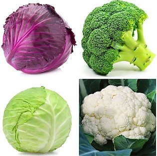 Pack of 2 (Cauliflower, Broccoli, Cabbage, Red Cabbage) (F1 Hybrid) Vegetable S…