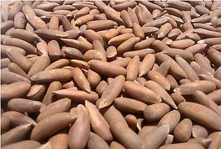 Chalgoza - Pine Nuts - 250 Grams Packing