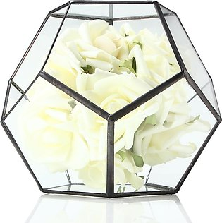 Geometric graphic micro - landscape potted glass vase meat plant glass flower...