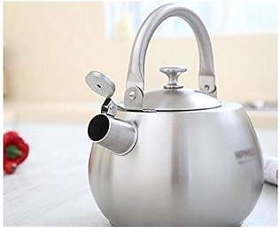 imported stainless steel electric kettle
