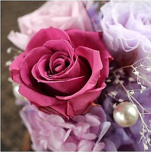Loveliness Eternal Flower Fresh Preserved Rose with Glass Bottle Cover Wedding Home Birthday Party Car Decoration