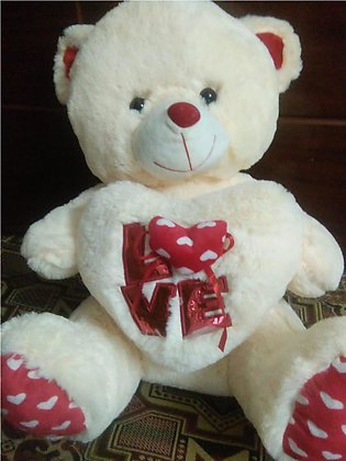 Soft and Cute TEDDY BEAR 24 inches