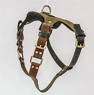 Leather Dog Harness (Hand made & Hand stitched)