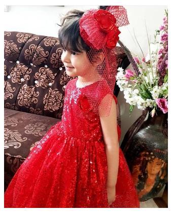 Fancy Branded Net and Silk Frock For Girls (Size 0 to 2xl) 9