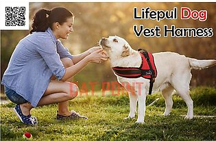 Dog Vest Harness - Dog Body Padded Vest - Comfortable Control for Large Dogs in…