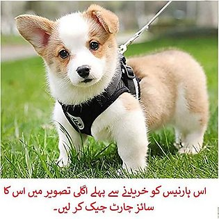Dog Chest Breathable Dog Harness Nylon Mesh Vest Harness for Dogs Puppy Collar …