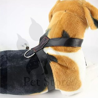Dog Leather Harness - Small Black
