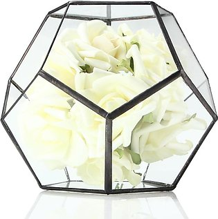 Geometric graphic micro - landscape potted glass vase meat plant glass flower r…