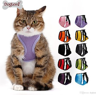 Puppy / Cat Chest Harness and Leash