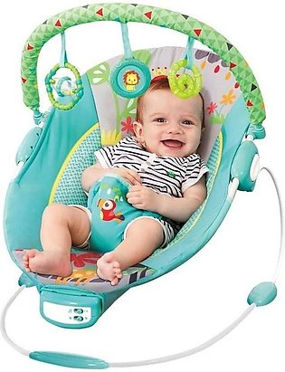 Mastela Toddler to Baby Rocker Bouncer Green