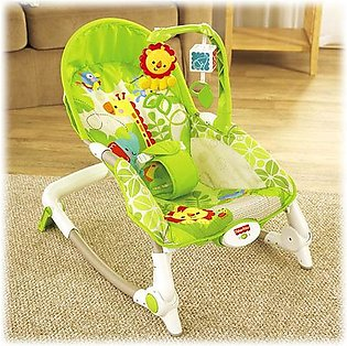 Newborn-to-Toddler Portable Rocker