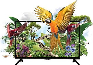 "Orient Macaw 32"" HD LED TV"