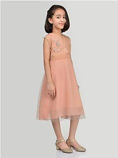 Embroidered Net Frock