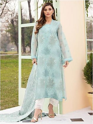 Embroidered Organza Suit