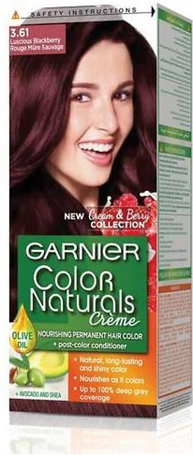 Garnier Color Naturals Hair Color Luscious Blackberry 3.61