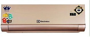 Electrolux Inverter AC 1 Ton SEA 1360TR Heat & Cool