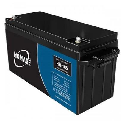 Homage Dry maintenance free Sealed lead acid Battery HB-165