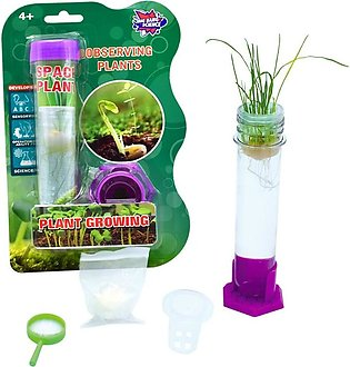 Educational Kid Toy of Test Tube Plant Growing