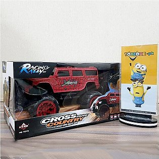 Cross-Country Truck 2WD 1:16 Scale Rally Car